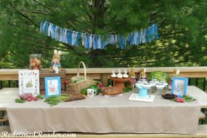 peter rabbit party 2a