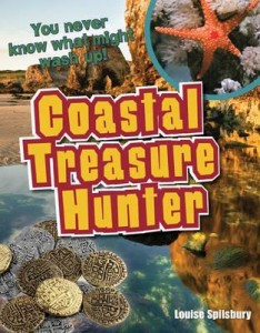 coastal treasure hunter