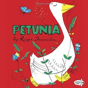 RR-Petunia