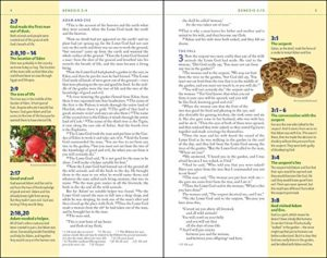Bible Review: NIV Kids' Visual Study Bible
