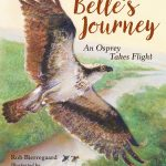 Birds of a Feather: a Book List for Bird Lovers
