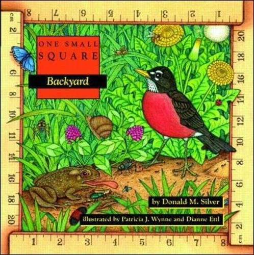 cover of one small square backyard