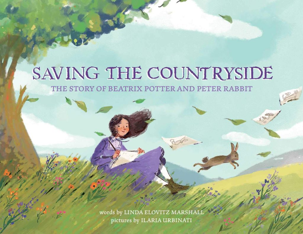 cover of Saving the Countryside
